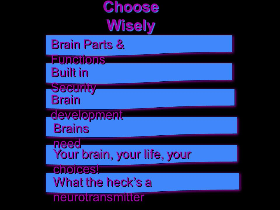 Choose Wisely Brain Parts & Functions Built in Security