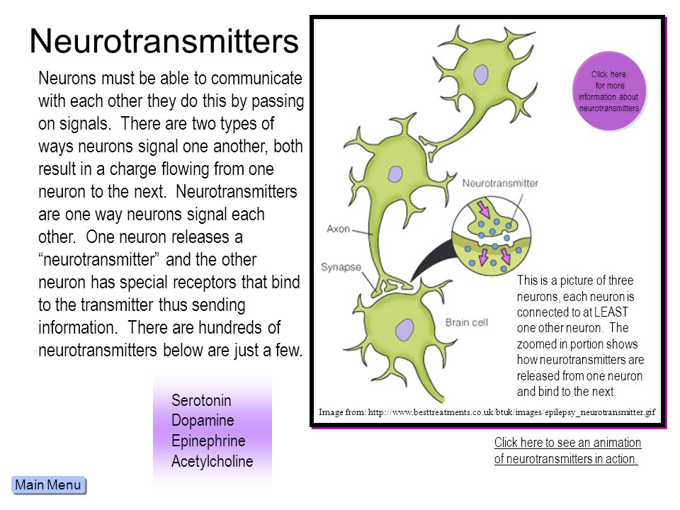 Neurotransmitters Click here. for more. information about. neurotransmitters.