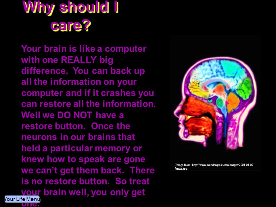 Why should I care Image from: http://www.wonderquest.com/images/2004-04-09-brain.jpg.