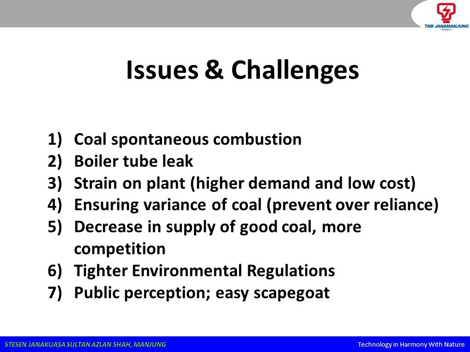 Issues & Challenges Coal spontaneous combustion Boiler tube leak