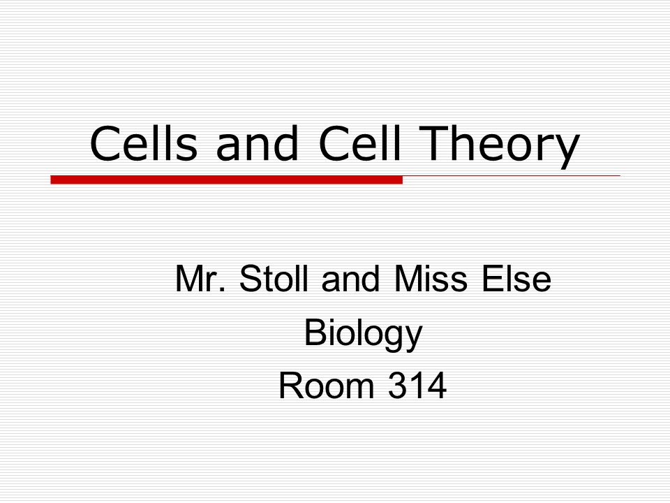 Mr. Stoll and Miss Else Biology Room 314