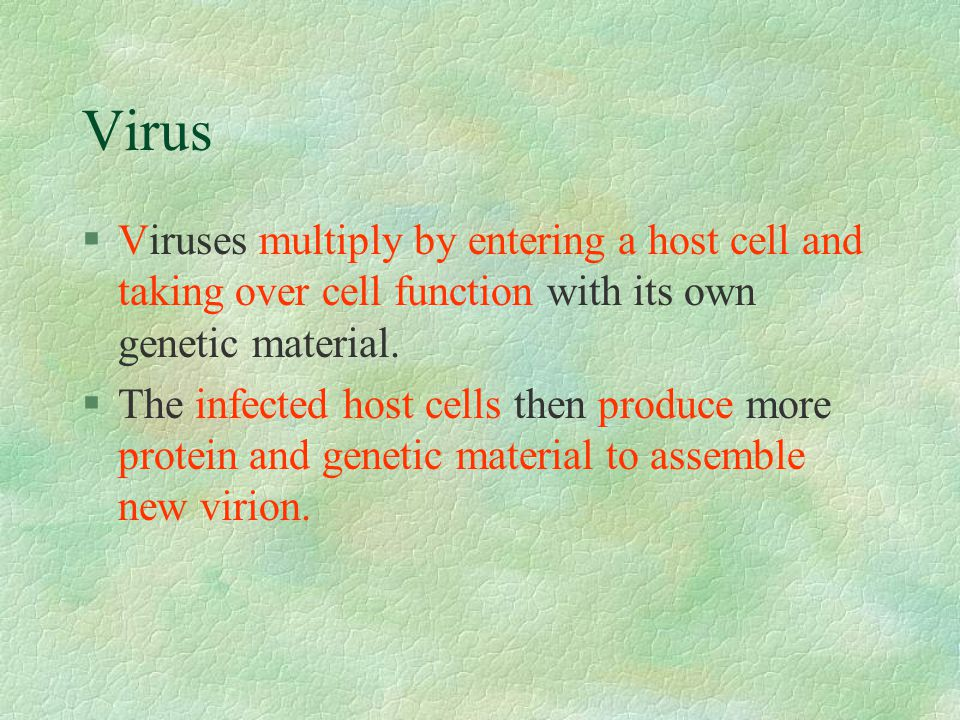 Virus Viruses multiply by entering a host cell and taking over cell function with its own genetic material.