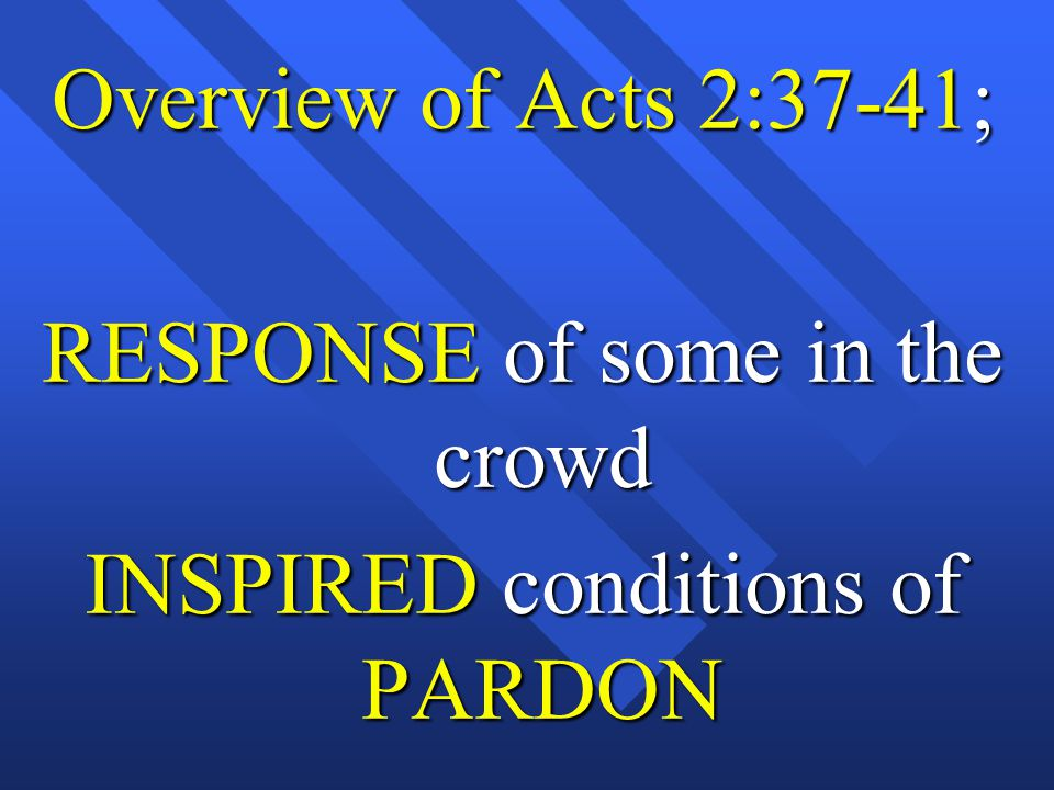 RESPONSE of some in the crowd INSPIRED conditions of PARDON