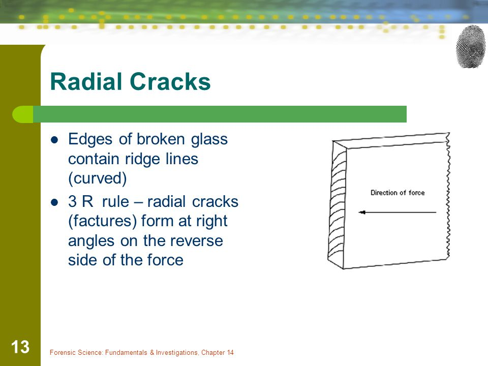 Radial Cracks Edges of broken glass contain ridge lines (curved)
