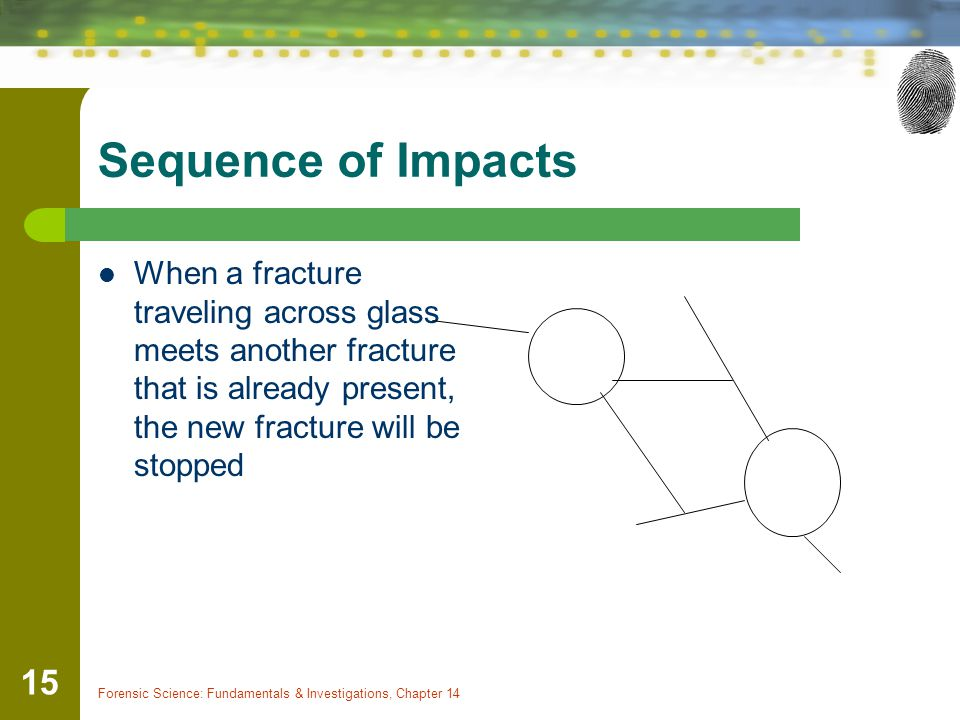 Sequence of Impacts When a fracture traveling across glass meets another fracture that is already present, the new fracture will be stopped.