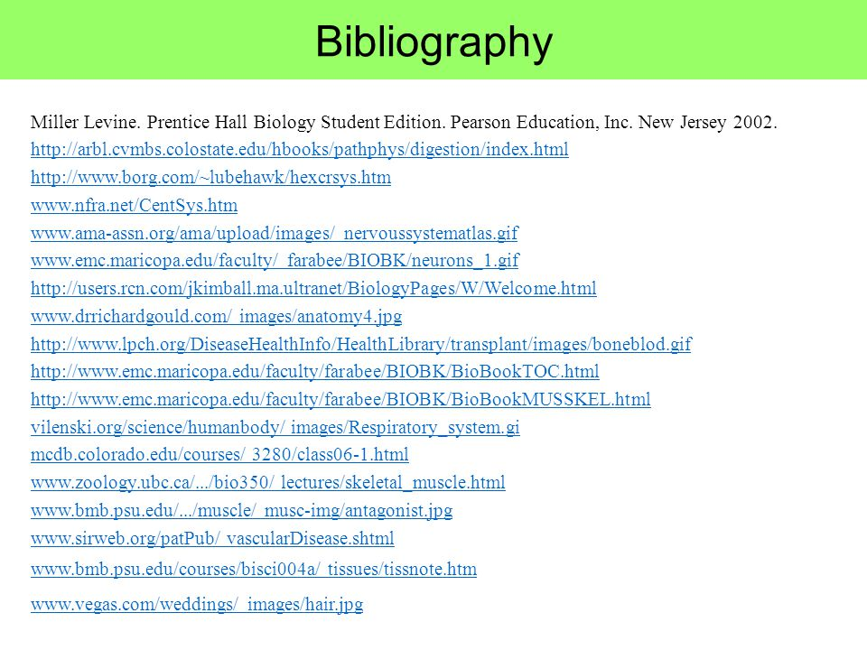 Bibliography Miller Levine. Prentice Hall Biology Student Edition. Pearson Education, Inc. New Jersey 2002.