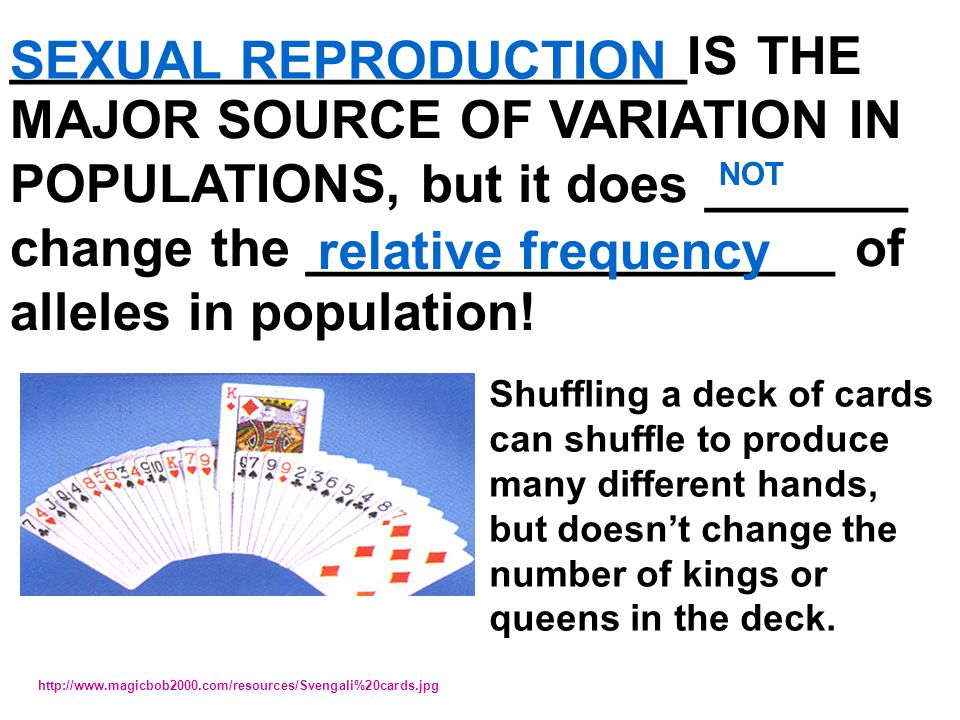 change the __________________ of alleles in population!
