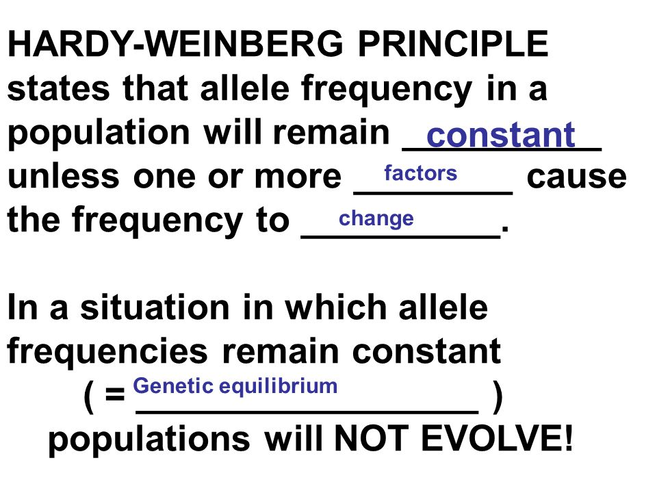 In a situation in which allele frequencies remain constant