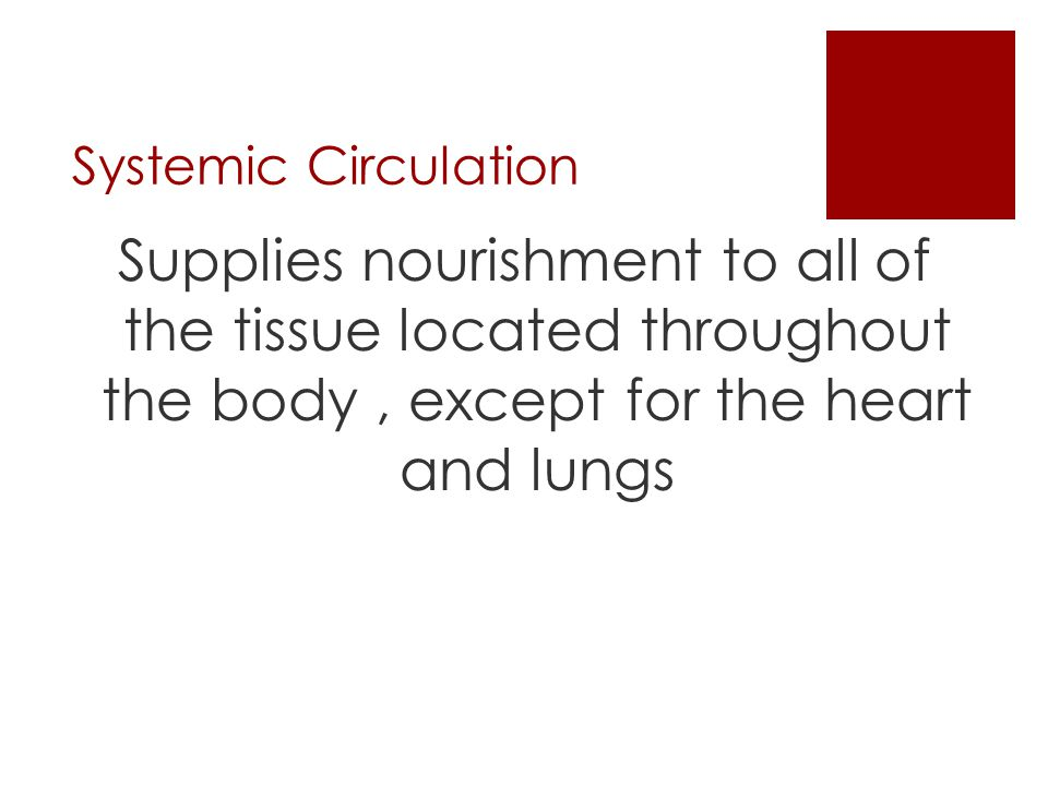 Systemic Circulation Supplies nourishment to all of the tissue located throughout the body , except for the heart and lungs.
