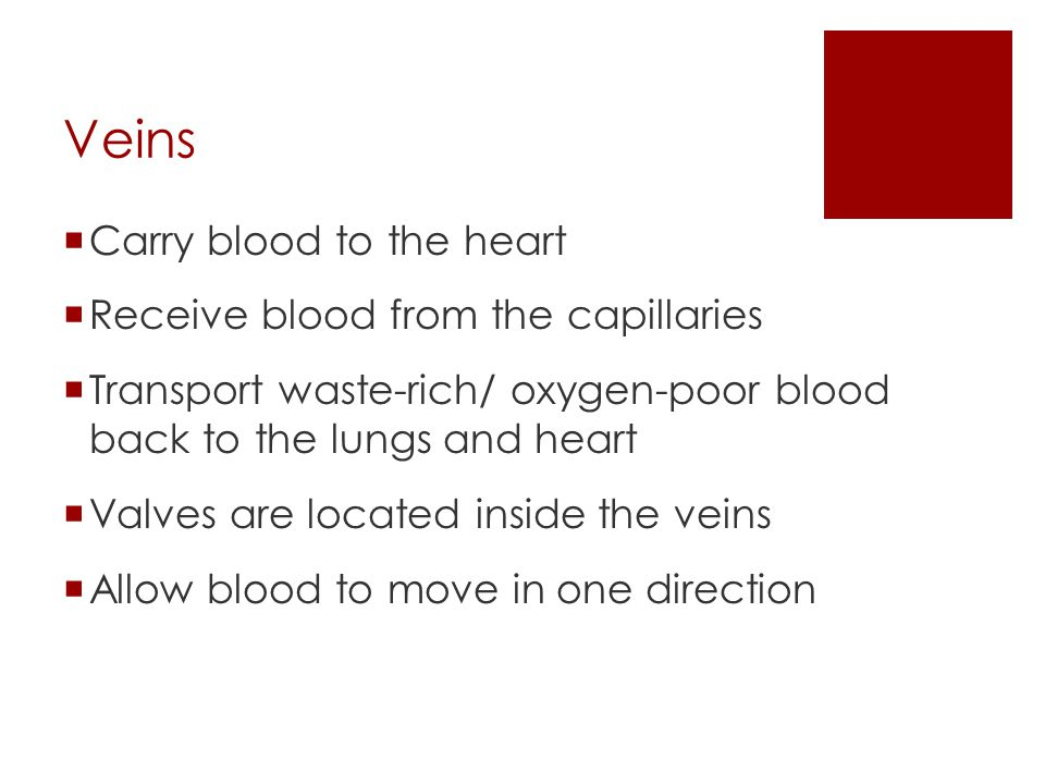 Veins Carry blood to the heart Receive blood from the capillaries
