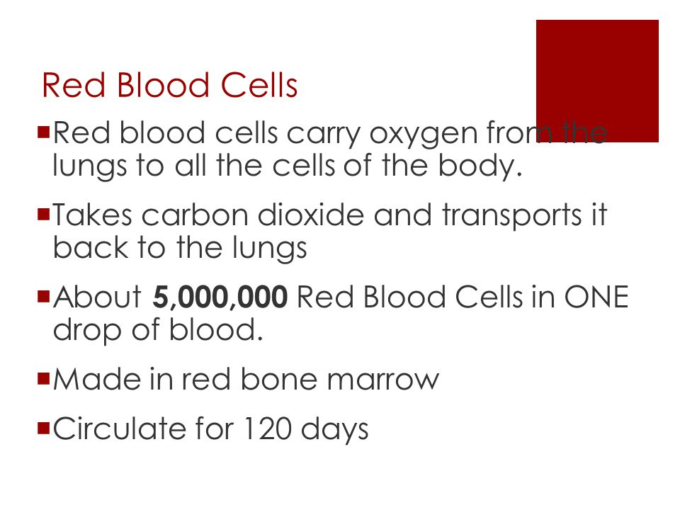 Red Blood Cells Red blood cells carry oxygen from the lungs to all the cells of the body. Takes carbon dioxide and transports it back to the lungs.