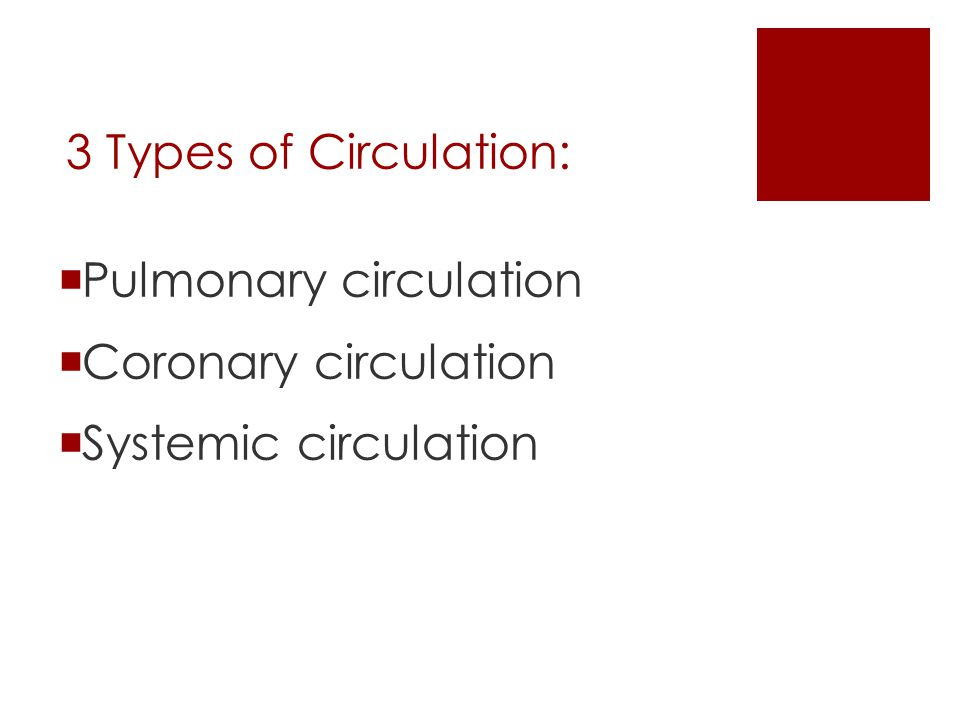 3 Types of Circulation: Pulmonary circulation Coronary circulation Systemic circulation