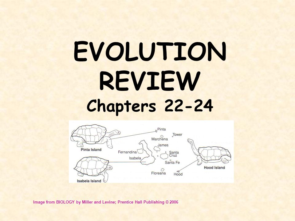EVOLUTION REVIEW Chapters 22-24