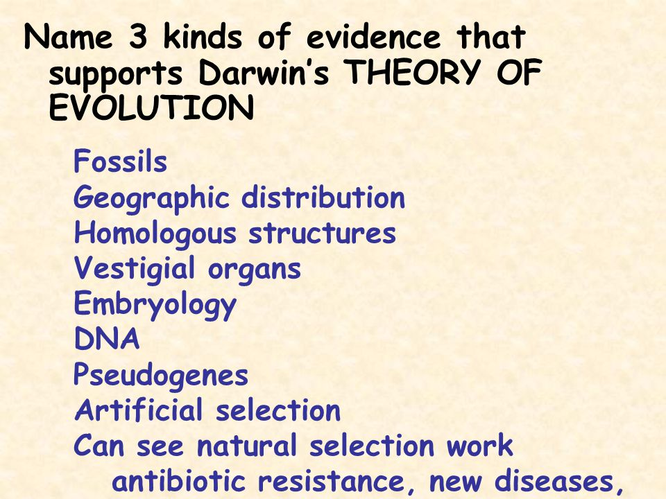 Name 3 kinds of evidence that supports Darwin's THEORY OF EVOLUTION