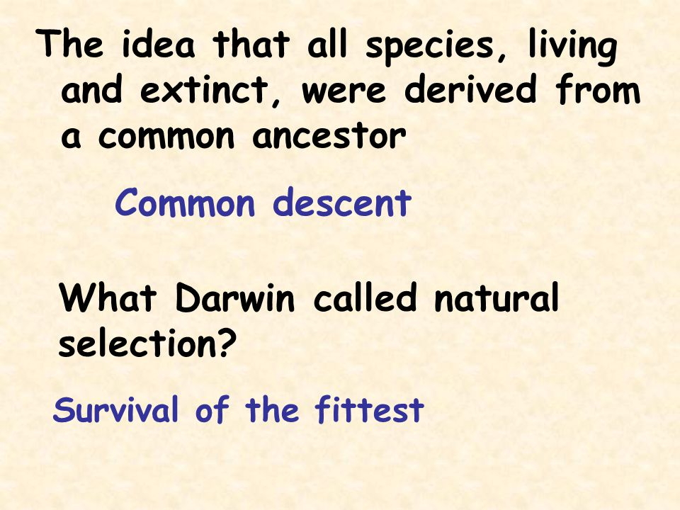 What Darwin called natural selection