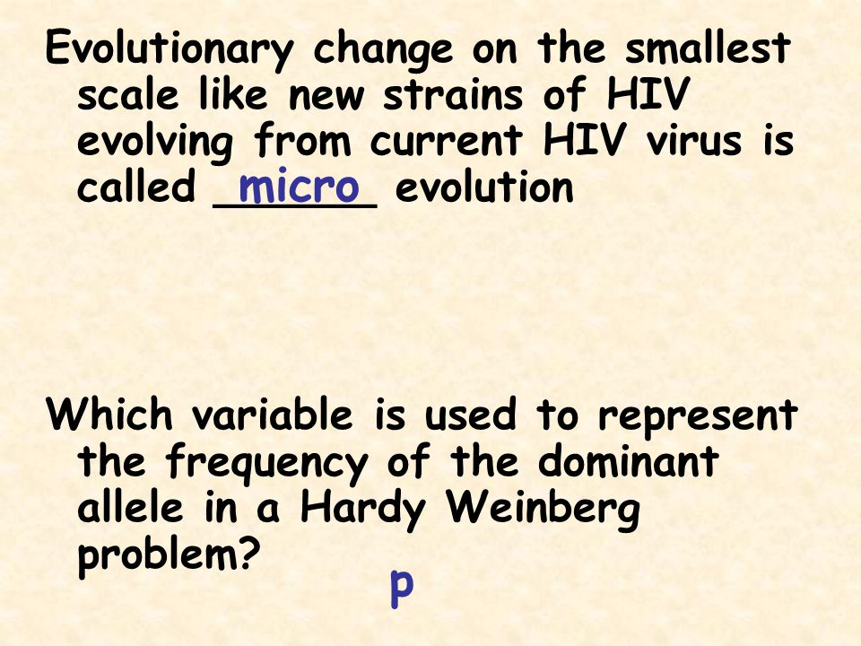 Evolutionary change on the smallest scale like new strains of HIV evolving from current HIV virus is called ______ evolution
