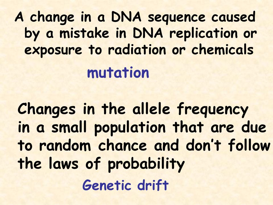 A change in a DNA sequence caused by a mistake in DNA replication or exposure to radiation or chemicals