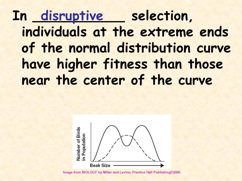 In ___________ selection, individuals at the extreme ends of the normal distribution curve have higher fitness than those near the center of the curve