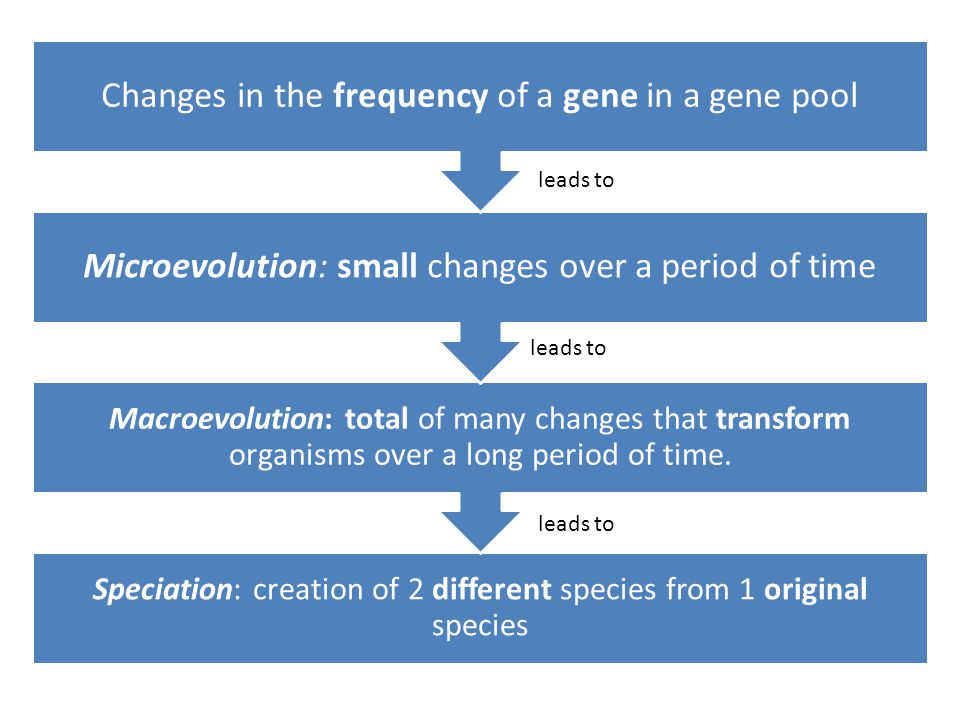 Changes in the frequency of a gene in a gene pool