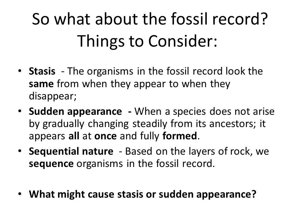 So what about the fossil record
