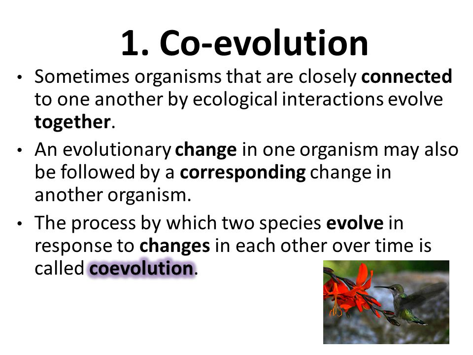 1. Co-evolution Sometimes organisms that are closely connected to one another by ecological interactions evolve together.