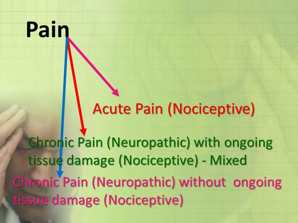 Pain Acute Pain (Nociceptive)