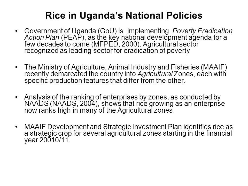 Rice in Uganda's National Policies