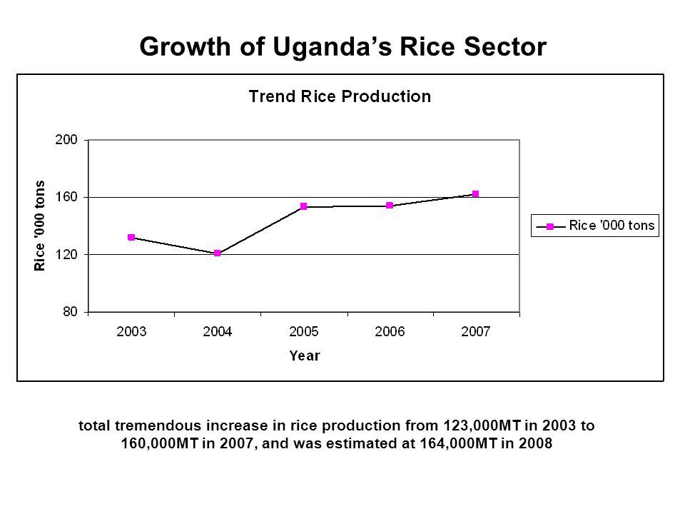 Growth of Uganda's Rice Sector