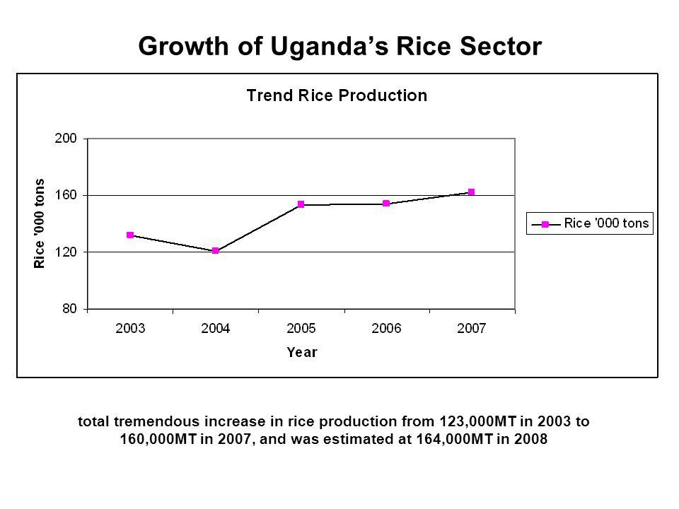 Growth of Uganda's Rice Sector