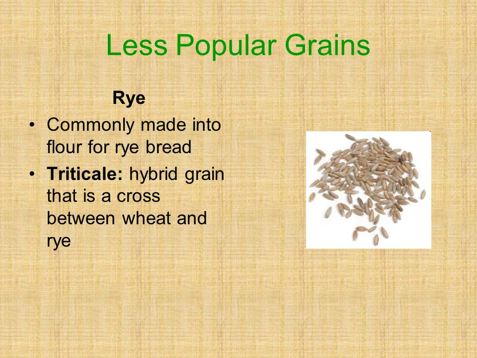 Less Popular Grains Rye Commonly made into flour for rye bread