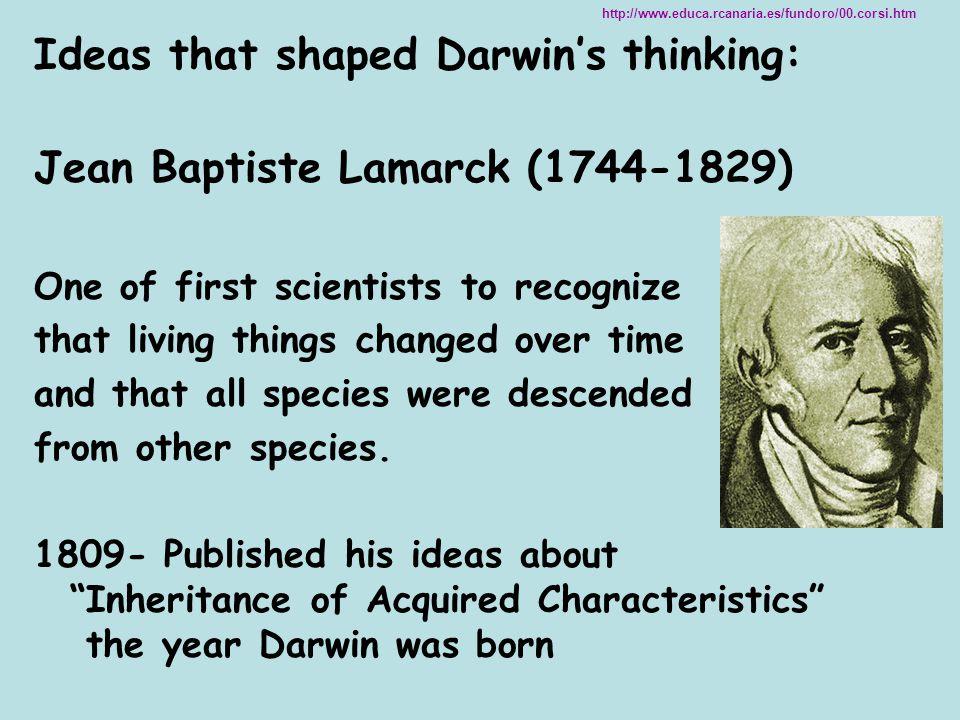Ideas that shaped Darwin's thinking: Jean Baptiste Lamarck (1744-1829)