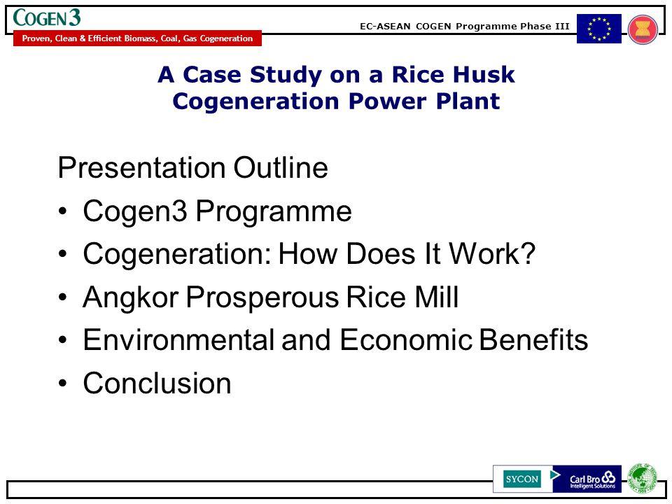 A Case Study on a Rice Husk Cogeneration Power Plant
