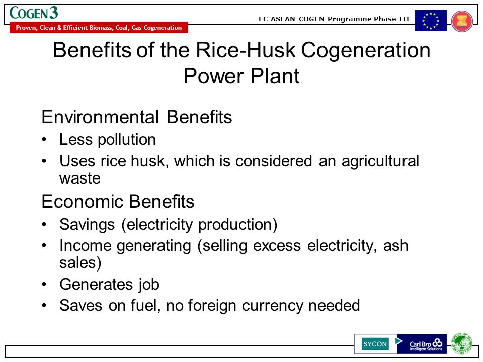 Benefits of the Rice-Husk Cogeneration Power Plant