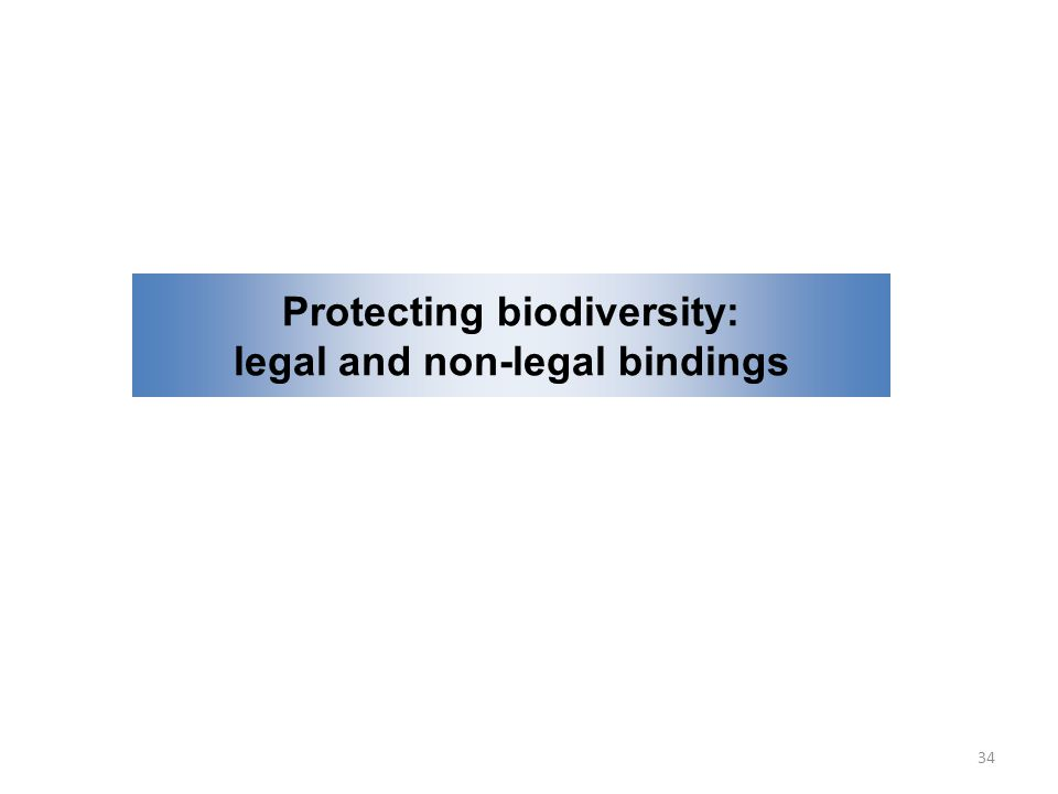 Protecting biodiversity: legal and non-legal bindings