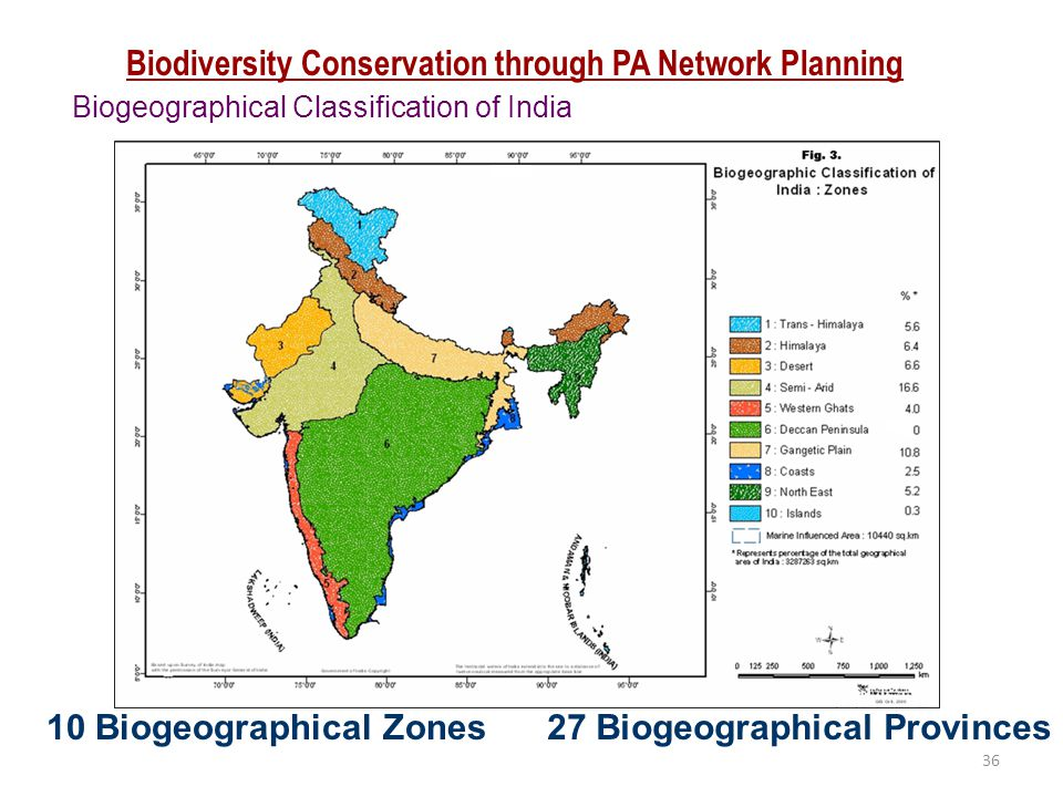 Biodiversity Conservation through PA Network Planning