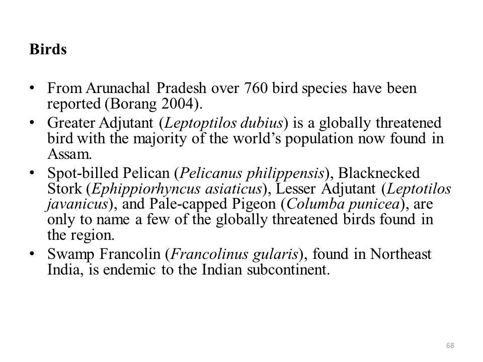 Birds From Arunachal Pradesh over 760 bird species have been reported (Borang 2004).
