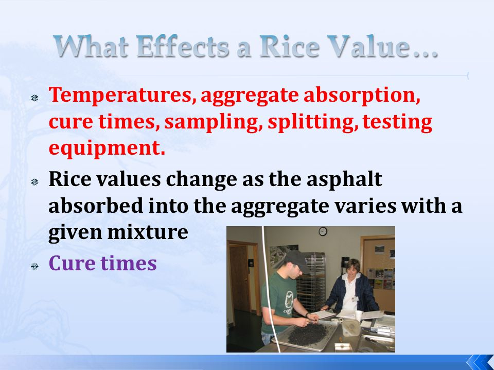 What Effects a Rice Value…
