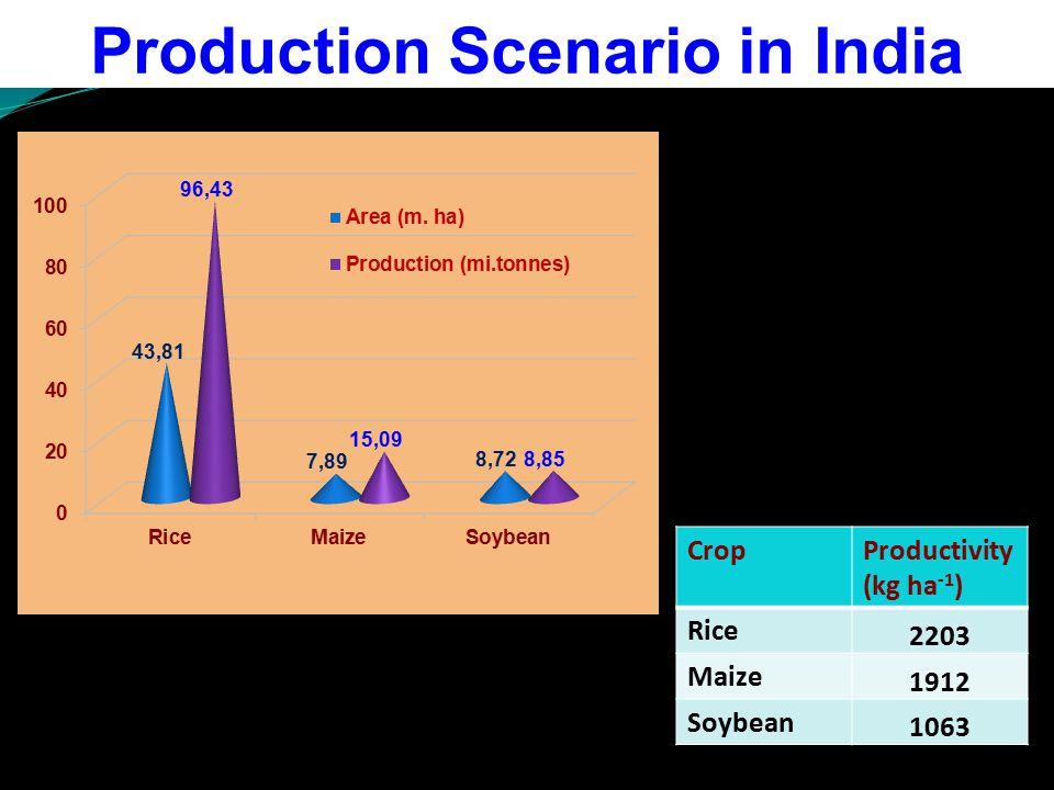 Production Scenario in India