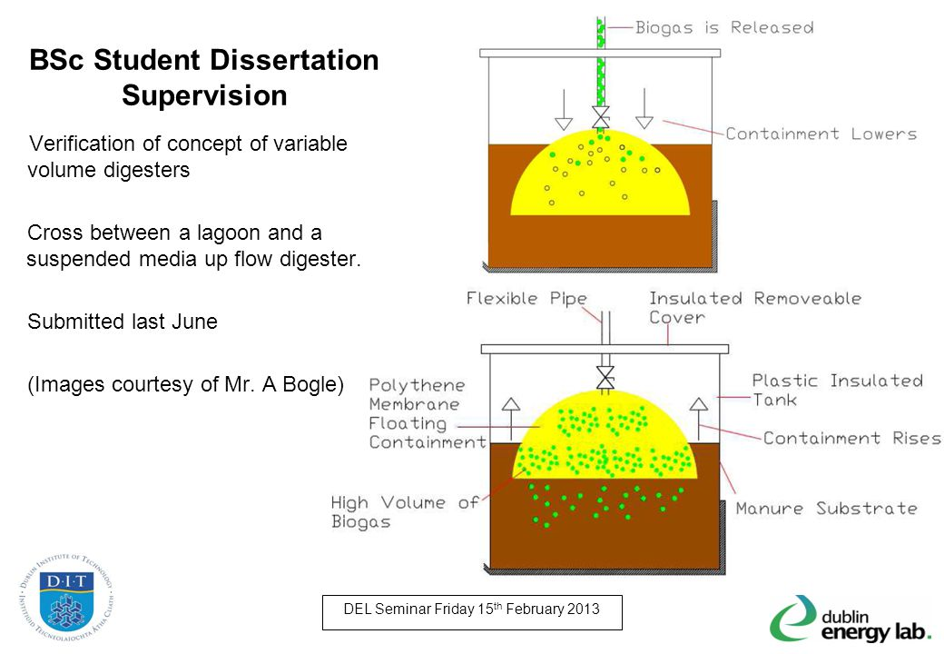 BSc Student Dissertation Supervision