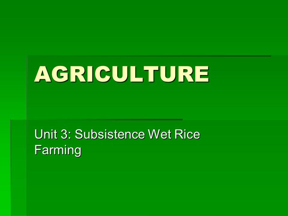 Unit 3: Subsistence Wet Rice Farming