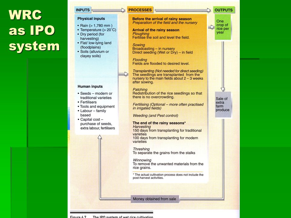 WRC as IPO system
