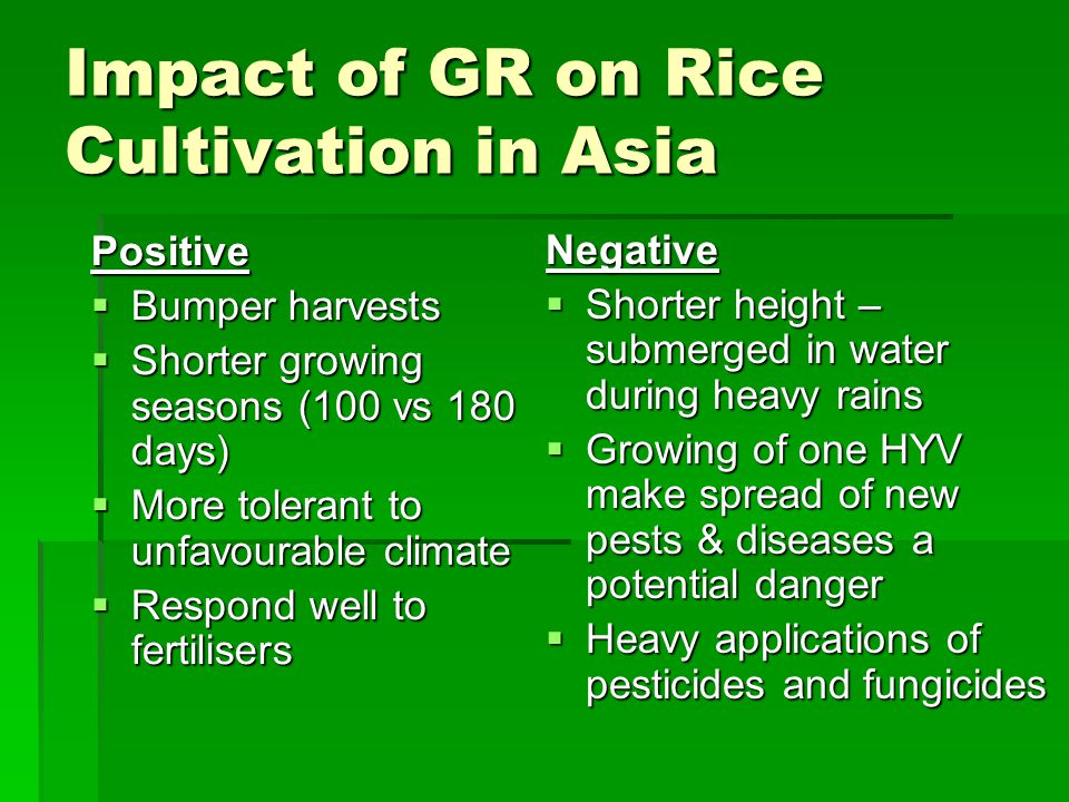 Impact of GR on Rice Cultivation in Asia