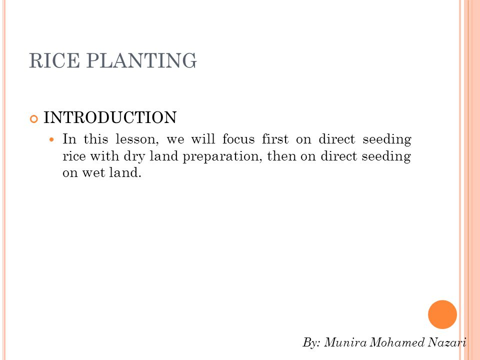 RICE PLANTING INTRODUCTION