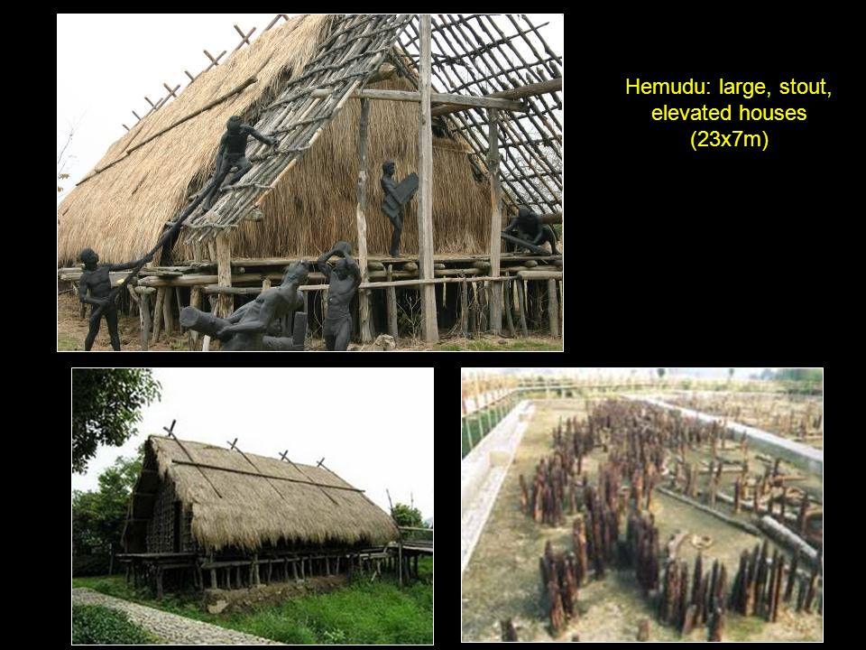 Hemudu: large, stout, elevated houses (23x7m)