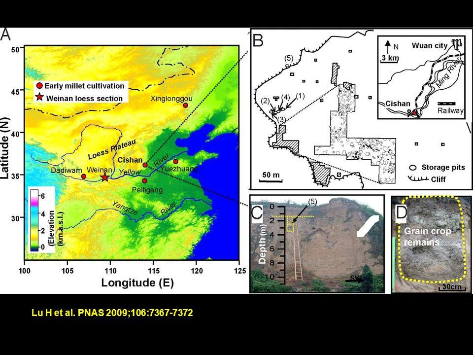 Lu H et al. PNAS 2009;106:7367-7372