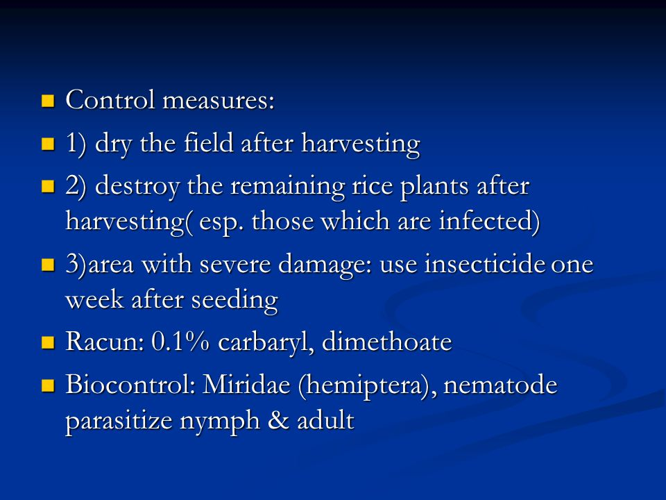 Control measures: 1) dry the field after harvesting. 2) destroy the remaining rice plants after harvesting( esp. those which are infected)