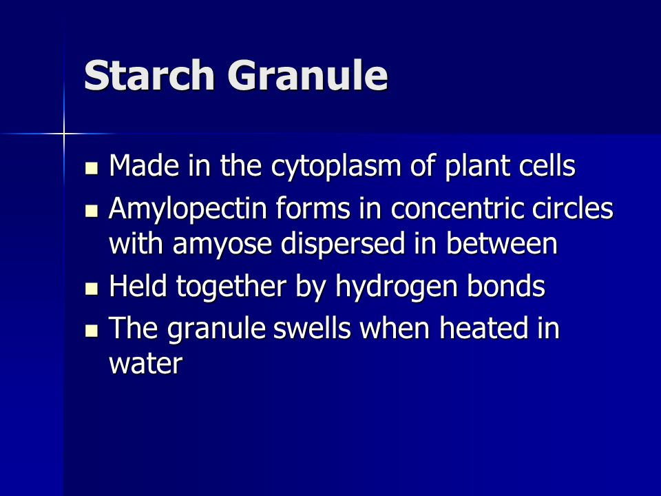 Starch Granule Made in the cytoplasm of plant cells