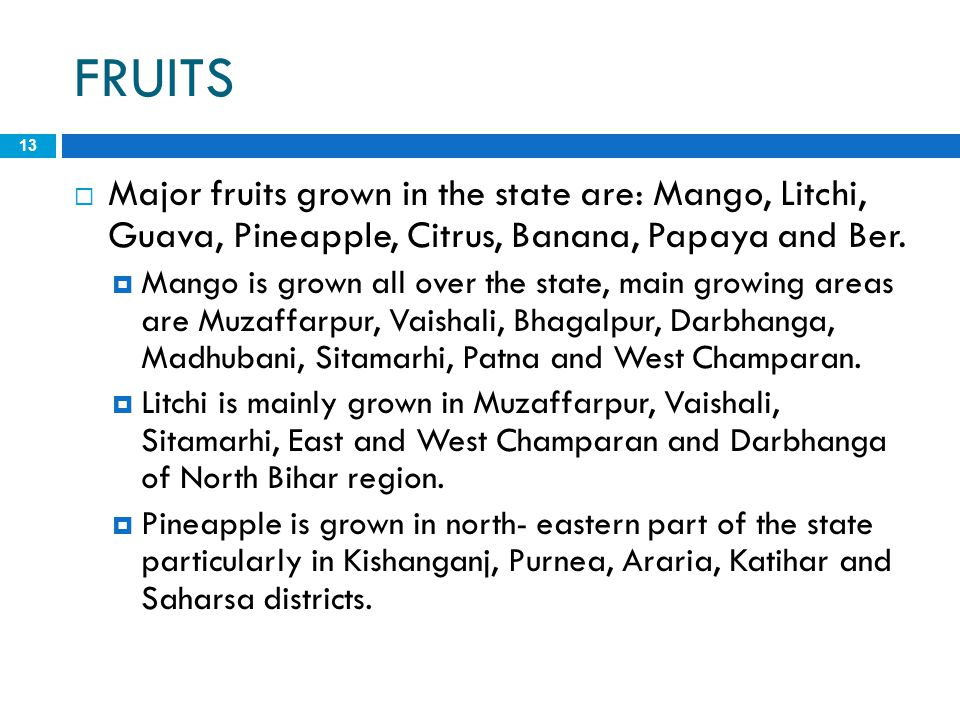 FRUITS Major fruits grown in the state are: Mango, Litchi, Guava, Pineapple, Citrus, Banana, Papaya and Ber.