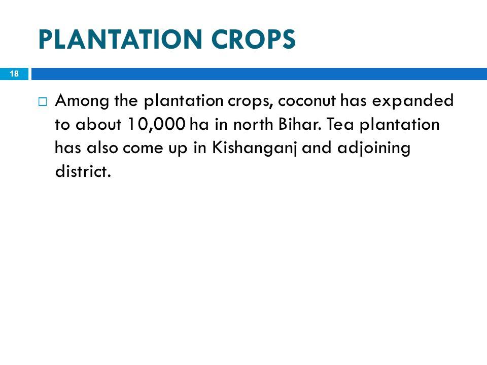 PLANTATION CROPS