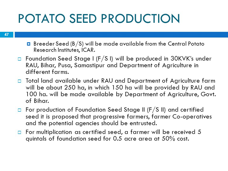 POTATO SEED PRODUCTION